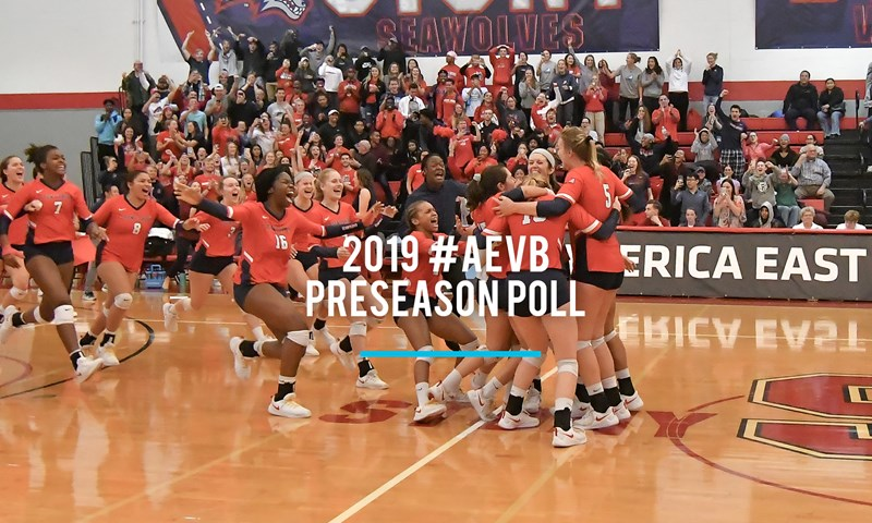 Back-to-Back Reigning Champions Stony Brook Tabbed 2019 #AEVB Favorite
